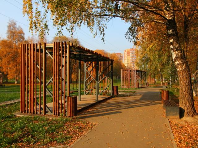 Качели в парковой зоне г.Лобня